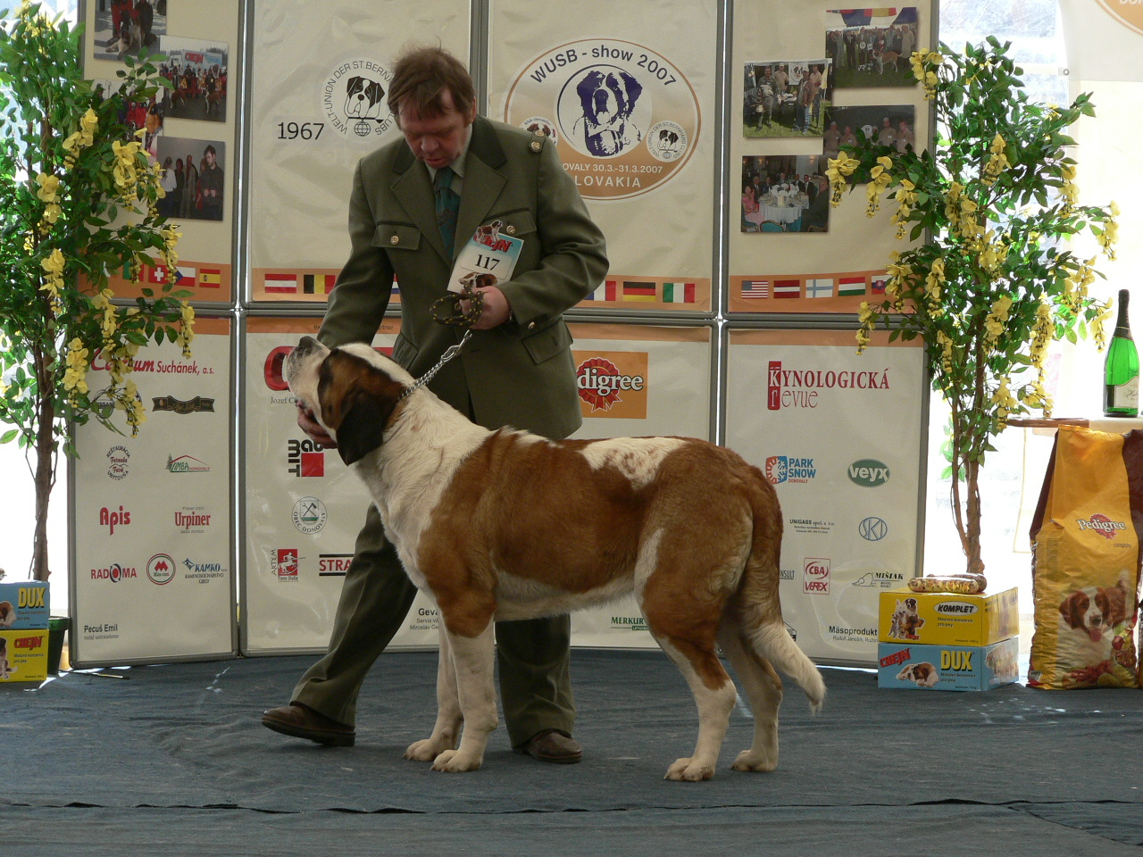 WUSB show 2007 - Donovaly(SK) 174.jpg